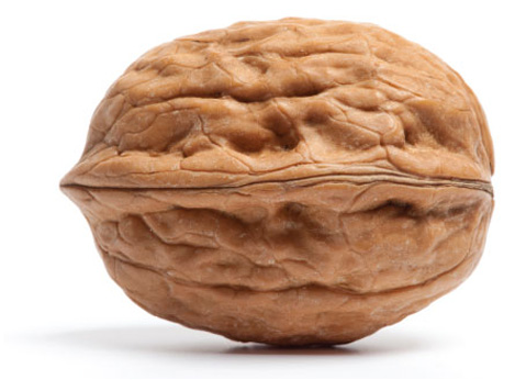 Image of a walnut